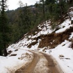 Snowfall In Kasauli