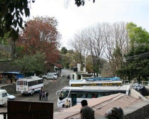 Kasauli Bus Stand