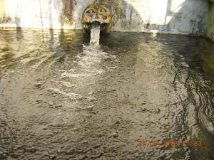 Nari Mandir, water spring in Kasauli