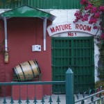 Kasauli Brewery Mature Room Closeup