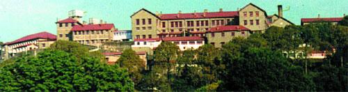 CRI - Pastures Institute Kasuli